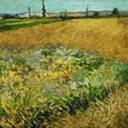 Wheat Field With Alpilles Foothills In The Background At Wheat Fields Van Gogh Series, By Vincent  Art Print