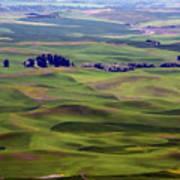 Wheat Fields Of The Palouse - Eastern Washington State Art Print