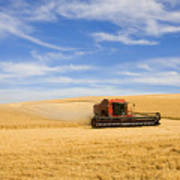 Wheat Harvest Art Print by Mike  Dawson