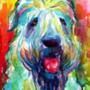 Wheaten Terrier Dog Portrait Art Print