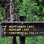 Which Way To Mayflower Lake Art Print