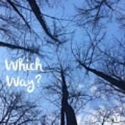 Which Way? Art Print