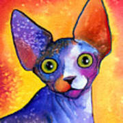 Whimsical Sphynx Cat Painting Art Print
