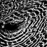 Whirlpool Abstract - Bw Art Print