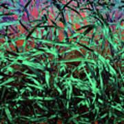 Whispering Grass Art Print