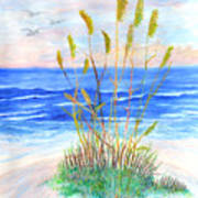 Whispering Sea Oats Art Print