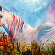 White Arabian Horse Art Print