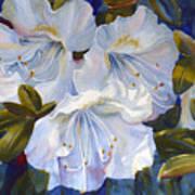 White Azaleas Art Print