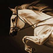 White Beautiful Horse  Art Print