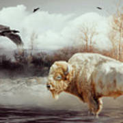 White Buffalo And Raven Art Print