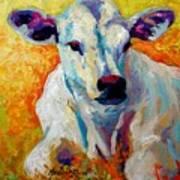 White Calf Art Print by Marion Rose