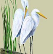 White Egrets And White Lillies Art Print