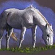 White Horse Grazing Art Print