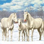 White Horses In Winter Pasture Art Print