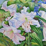 White Lily. 2007 Art Print