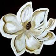 White Magnolia On Black Art Print