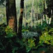 White Mountain Woods Art Print