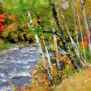 White Mountains Brook Art Print