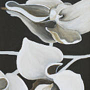 White Orchid Middle Section Art Print