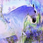 White Pegasus Art Print