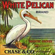 White Pelican Fruit Crate Label C. 1920 Art Print