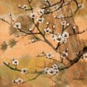 White Plum Blossoms With Pine Tree Art Print