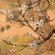 White Plum Blossoms With Pine Tree Art Print