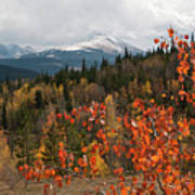 White River National Forest Autumn Panorama Art Print