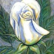 White Rose One Art Print
