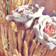 White Roses Art Print
