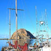 White Sail Boat Morro Rock  Art Print