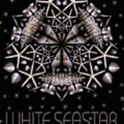 White Seastar Art Print