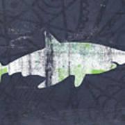 White Shark- Art By Linda Woods Art Print