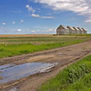 White Sheds On A Prairie Farm In Spring Art Print