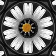 White Shimmering Flower Art Print