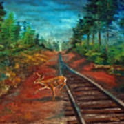 White Tail Deer In Southern Woods Art Print