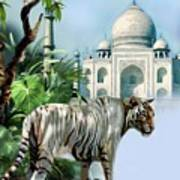 White Tiger And The Taj Mahal Image Of Beauty Art Print