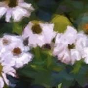 White Triangle Flowers Art Print