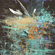 White Water Lily Art Print