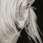 Whitefall Art Print