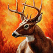 Whitetail Buck Portrait Art Print