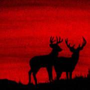 Whitetail Deer At Sunset Art Print
