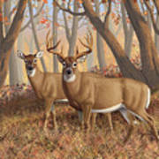 Whitetail Deer Painting - Fall Flame Art Print by Crista Forest