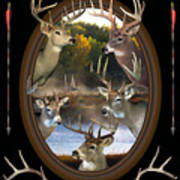 Whitetail Dreams Art Print by Shane Bechler