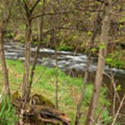 Whitewater River Spring 43 Art Print