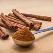 Whole Cinnamon Sticks With A Heaping Teaspoon Of Powder Art Print