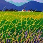 Wicklow Meadow Ireland Art Print