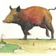 Wild Boar Delgadin Art Print