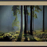 Wild Daisies On The Forest Floor Art Print