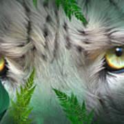 Wild Eyes - Snow Leopard Art Print
